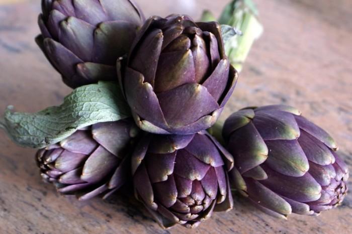 Artichauts violets bleu ou poivrade