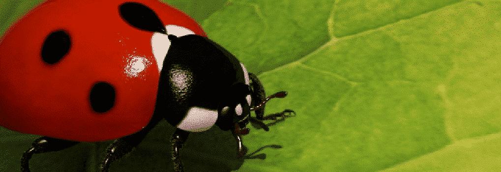 Le Jardin de Stéphane  Le Jardin de Stéphane  Le Jardin de Stéphane  Le Jardin de Stéphane  Le Jardin de Stéphane  Le Jardin de Stéphane  Le Jardin de Stéphane  Le Jardin de Stéphane  Le Jardin de Stéphane  Le Jardin de Stéphane  Le Jardin de Stéphane  Le Jardin de Stéphane  Le Jardin de Stéphane  Le Jardin de Stéphane  Le Jardin de Stéphane  Le Jardin de Stéphane  Le Jardin de Stéphane  Le Jardin de Stéphane  Le Jardin de Stéphane  Le Jardin de Stéphane  Le Jardin de Stéphane  Le Jardin de Stéphane  Le Jardin de Stéphane  Le Jardin de Stéphane  Le Jardin de Stéphane  Le Jardin de Stéphane  Le Jardin de Stéphane  Le Jardin de Stéphane  Le Jardin de Stéphane  Le Jardin de Stéphane  Le Jardin de Stéphane  Le Jardin de Stéphane