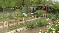 jardin familiale a rennes