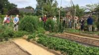 jardin d'un particulier