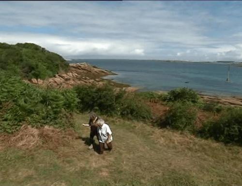 À la découverte de l'île Millau