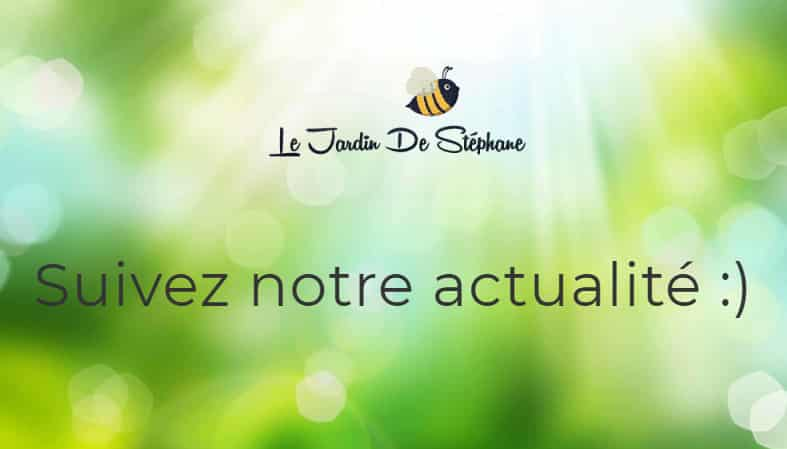 facebook le jardin de stephane